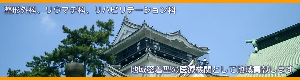 愛知県岡崎市 整形外科,リウマチ科,エコーガイド下筋膜リリース ませぎ整形外科